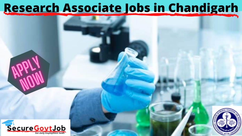 Research Associate Jobs in Chandigarh